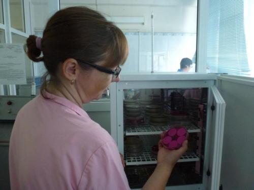 расценка микробиологического анализа